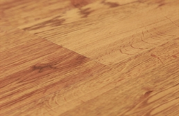 Shaw Sumter Plus Vinyl Planks