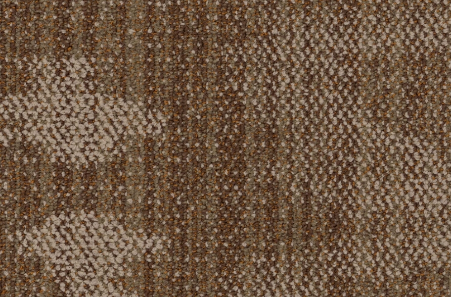 EF Contract Seep Carpet Planks - Sepia