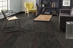 Shaw Disclose Carpet Tile