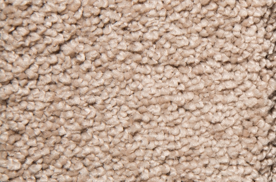Air.o New Beginnings I Carpet with Pad - Cityline