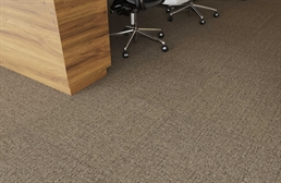 Pentz Oasis Carpet Tiles