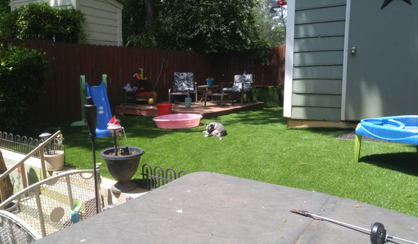 Customer review image of  in Back yard